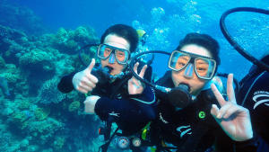 Intro & Certified Diving