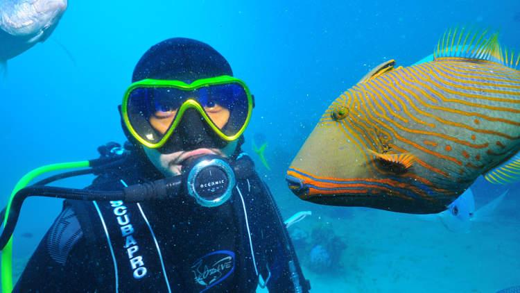 Diving at Green Island